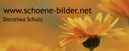 schoene_bilder_visual